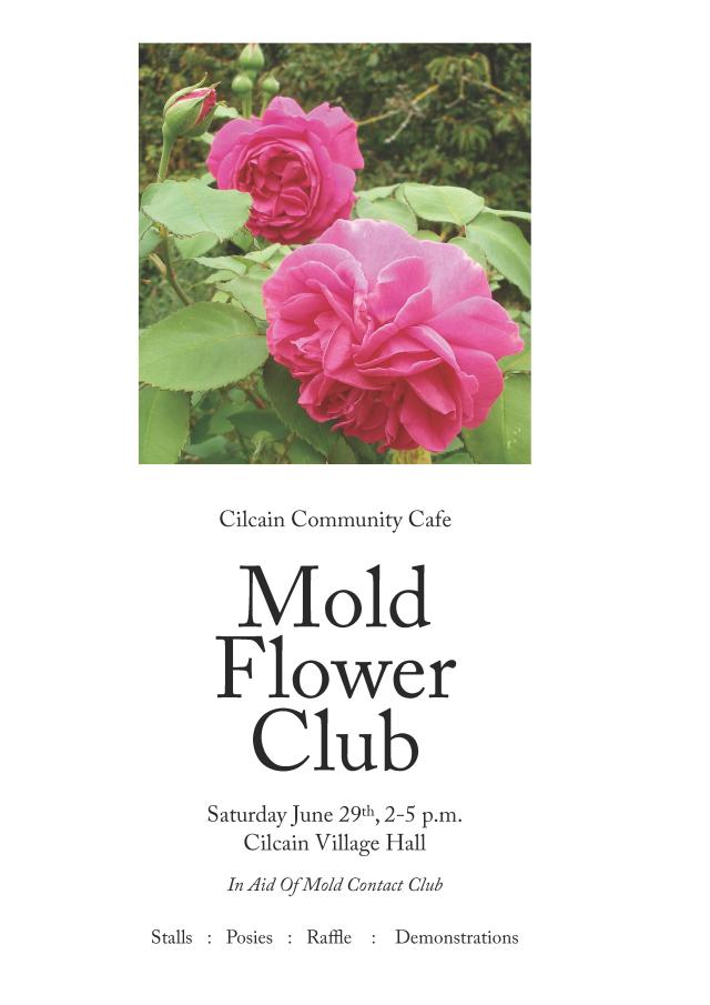 Mold Flower club