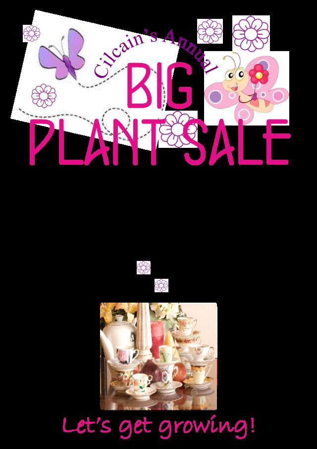 big plant sale preview