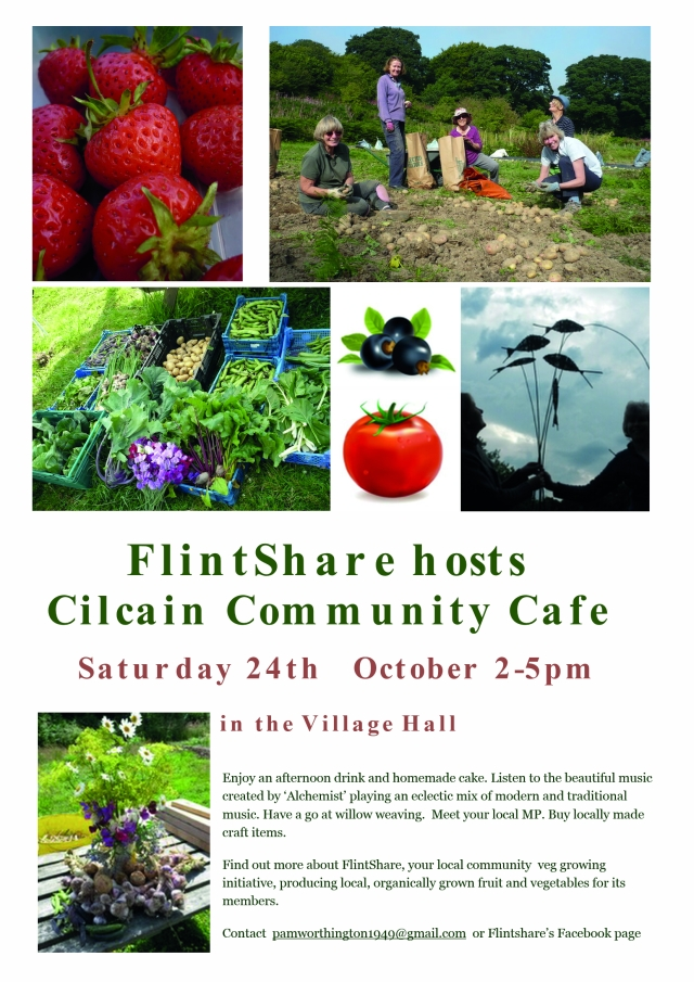 Flintshare poster October 2015