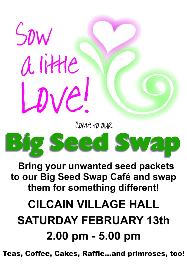 Big Seed Swap Feb 2016