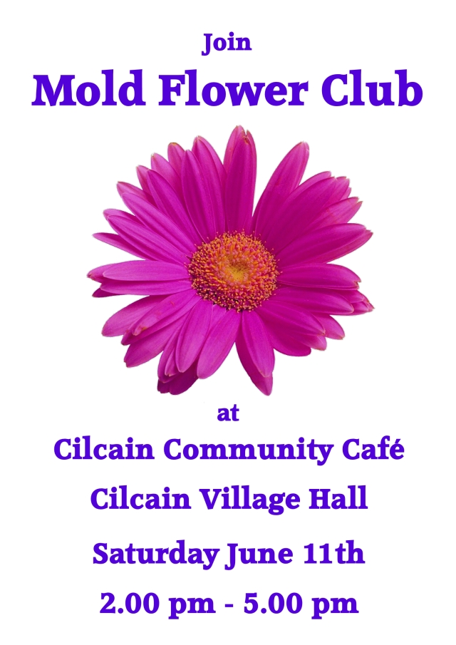 Mold Flower Club Poster, June 2016