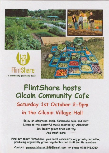 flintshare-poster-sept-2016
